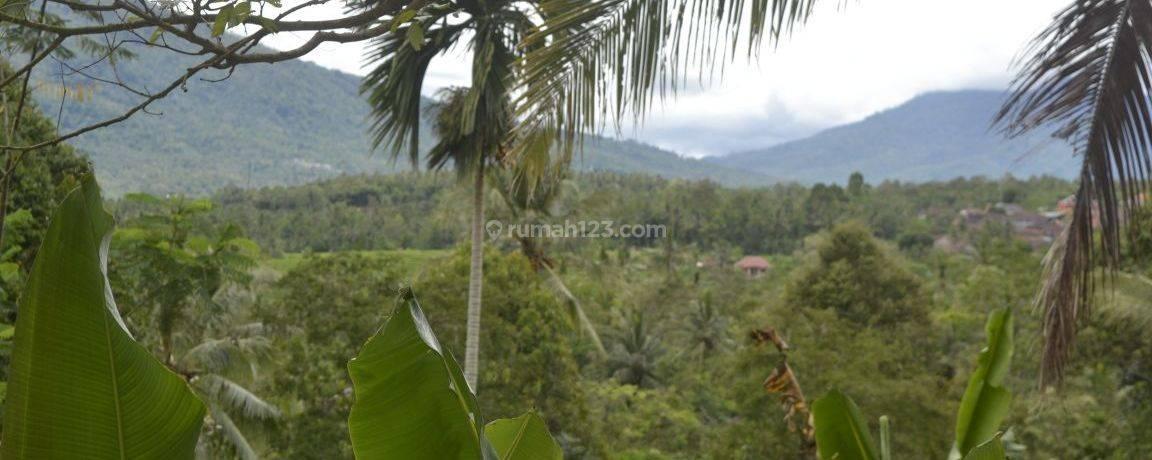 Cocok untuk Investasi perkebunan, Peternakan, perumahan Rp, 350.000 / m2