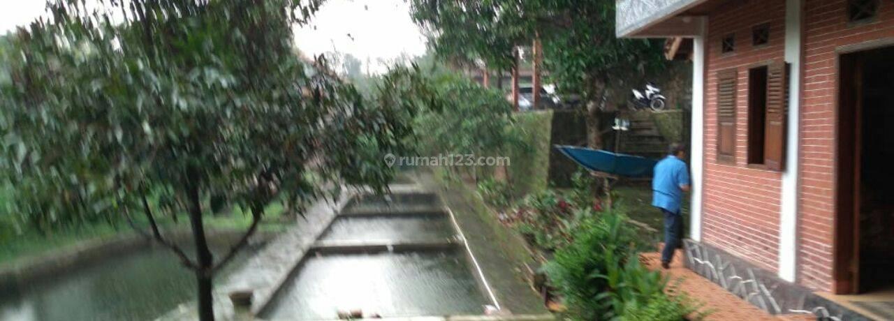 Subang Jalan Raya Cagak, 4HA(Villa, Kebun, Sawah,Mata Air)