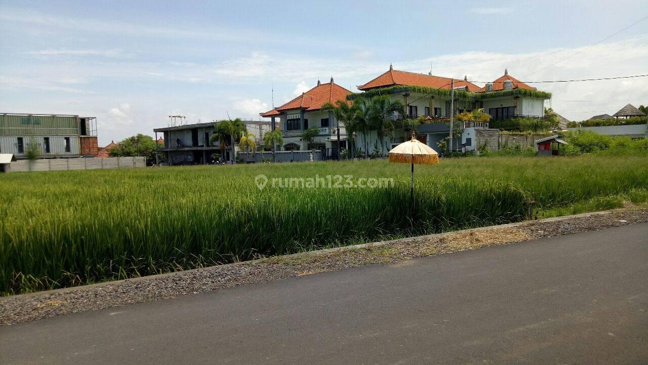 Tanah: 1800m2 super murah siap Bangun Di jln utama kayu Tulang canggu Badung Bali