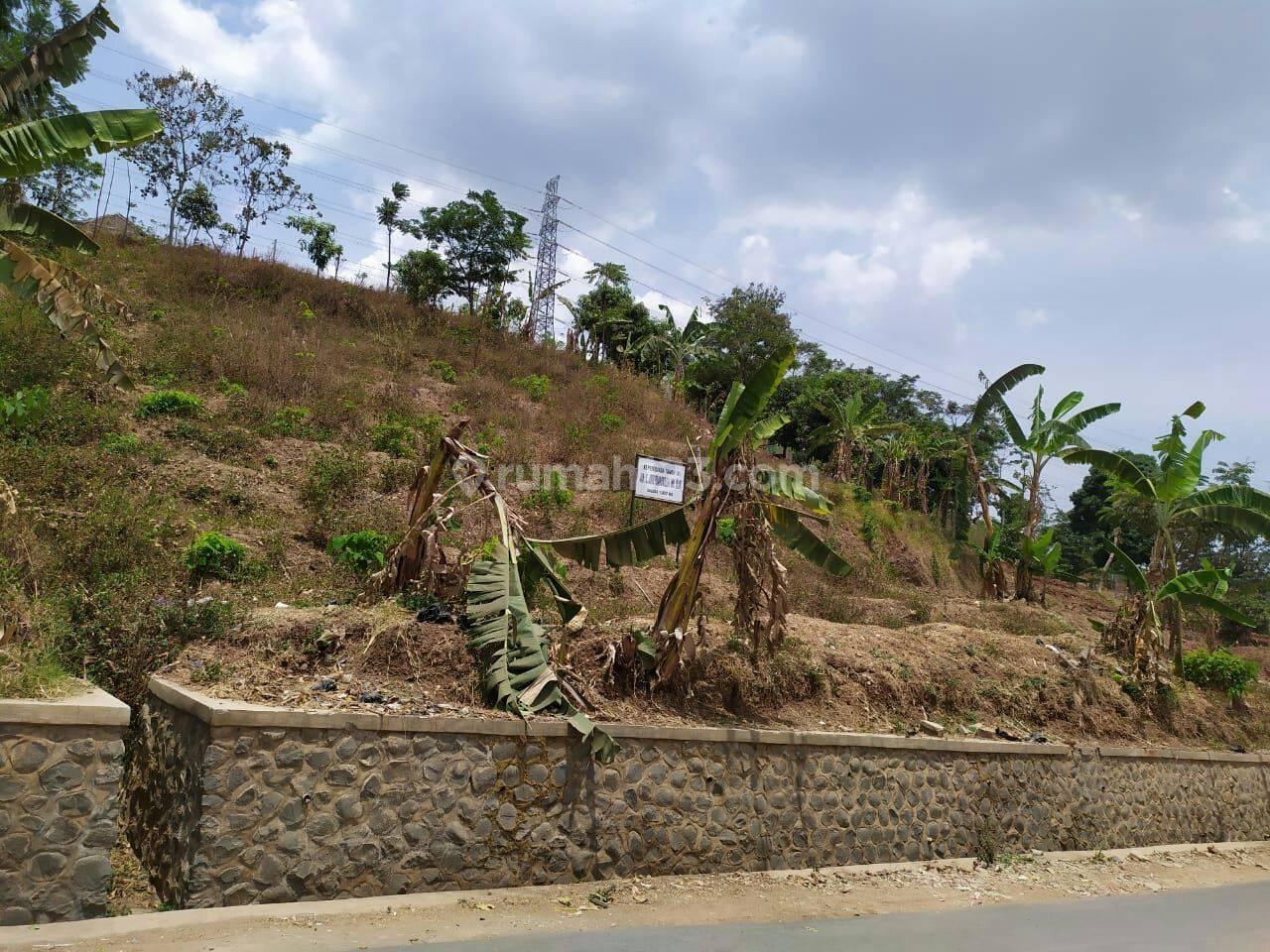 Tanah Matang Di Desa Sumedang Kabupaten Bandung Jawa Barat