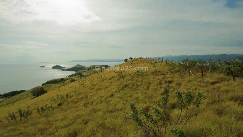 LAND IN TORO BEMBE LABUAN BAJO