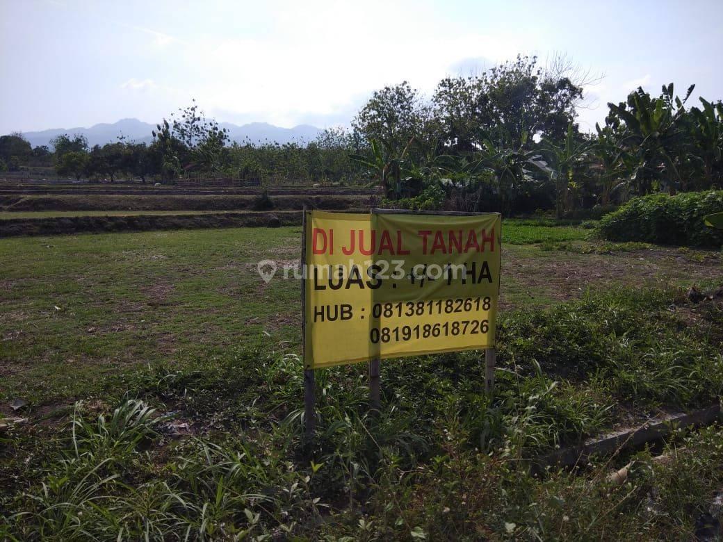 Tanah SHM dekat Pelabuhan Sluke, Rembang, Jawa tengah