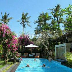 Beautiful Balinese Hotel in Sanur