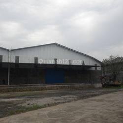 Gudang Cikupa Balaraja Bangunan Baru Loading Dock Luas 6000 m2