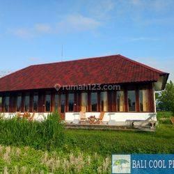 H635 - 2 Beds bungalow spacious garden in KARANGASEM