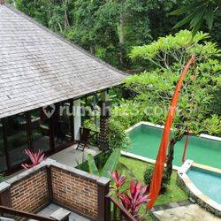 GOOD QUALITY VILLA IN RIVERSIDE WITH RICEFIELD AND FOREST VIEW NEAR OF TANAH LOT - BALI