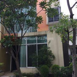 De Oaze Residence Tomang LT.120 Jarang Ada 08179196469 Kirman Wen