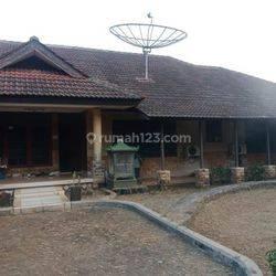 Cinere  daerah Gandul, tanah dan bangunan luas
