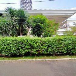 Rumah idaman mewah termurah hitung tanah sajah bonus bangunan SHM Mandala raya Jakarta Selatan