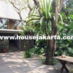 Compound for Lease nice and modern house with environmentally friendly at Jati Padang 08176881555