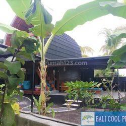 H877 - Beautiful 2 lumbung houses in East Bali