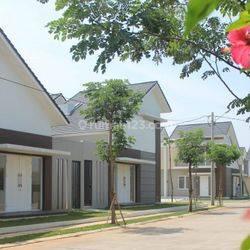 Magnolia Residences
