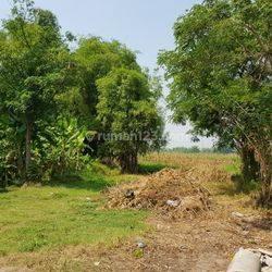 Tanah Industri, Kutorejo, Mojokerto