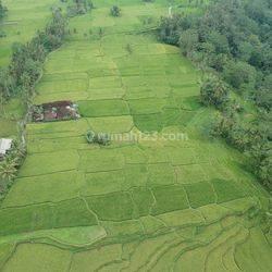 good view , kenderan tegalalang - Ubud ( 93 are )