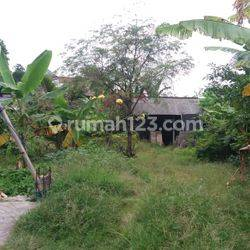 Land suitable for Fitness Center at Canggu