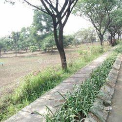 Tanah Murah di Rorotan Tanjung Priok Jakarta Utara