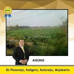 Tanah Mojokerto Area Industrial dan Nol Jalan Propinsi