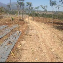 Tanah matang siap bangun cocok untuk rumah subsidi di arjasari banjaran