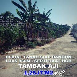 Tanah di Tambakaji, Semarang