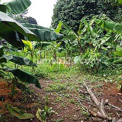 Dijual Tanah Siap Bangun Daerah Limo