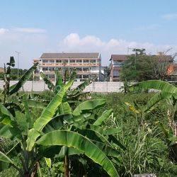 Tanah Di Soekarno Hatta Kota Bandung Jawa Barat