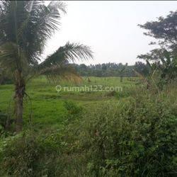 Tanah Luas Datar Lokasi Rajeg Tangerang
