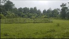 Lahan Kosong Tigaraksa Tangerang Banten