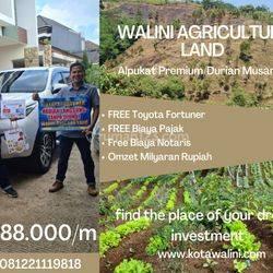 Tanah Kavling Bandung Barat Walini Agriculture Land Omzet Milyaran Rupiah
