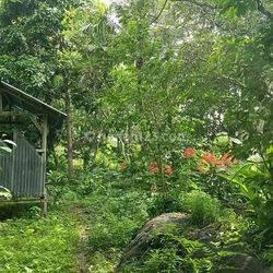 Tanah seluas 10.700 m2, sangat bagus. Cocok untuk rumah, villa ataupun investasi, Labuan Bajo, Manggarai Barat