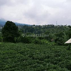 Bismillah  Tanah Murah View Bagus Suasana Sejuk dan Nyaman Air Normal Sangat Cocok Untuk di Bikin Villa Balong Atau Buat Investasi