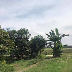 Tanah Murah di Babakan Asam Teluk Naga Tangerang