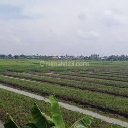Tanah BU di Babakan Asam Teluk Naga Tangerang