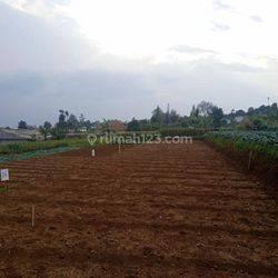 TERBATAS Kavling tanah idaman di Cihanjuang Gegerkalong Parongpong