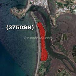 (3750SH) Lahan Los Pantai Pasir Putih Sumbawa Barat Nusa Tenggara Barat Murah