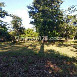 The land  located in Balangan area