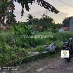 Tanah di Kampung Ciater - Rawa Mekar Jaya (2001)