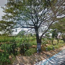 Tanah Luas di nol jalan raya pasuruan malang nego sampai deal