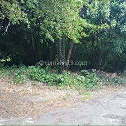 2 bidang Tanah di lingkungan villa area Canggu, Kuta