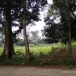 Dijual tanah 2000m2 milik perorangan (bukan PT) Tigaraksa Solear