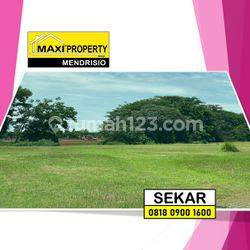 Promo Merdeka ! Special Price ! Kavling Bukit Golf BSD !