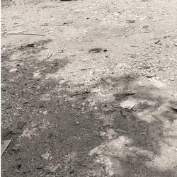 Tanah Bagus Murah Strategis di Sempet Barat Jakarta Utara