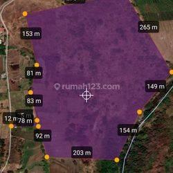 Jual tanah murah meriah, lokasi strategi dekat toll purwodadi sekitar 1 kilo
