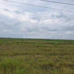 Tanah Jl. Raya Kronjo, Kronjo, Tangerang, SHM. Luas 12505 m2