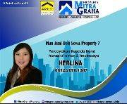 Herlina herlina
