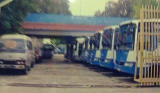 Showroom Bus di Joglo Raya Jkt