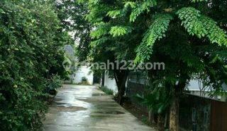 Rumah Asri di Jl Kesehatan XII Bintaro Pesanggrahan Jakarta Selatan Termurah