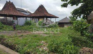 Land On The Promising Location