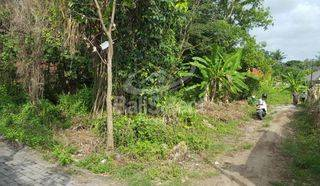 Leasehold Land In Pererenan