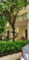 Rumah Mewah Elit Kawasan Kedutaan Patra Kuningan Setiabudi Jakarta Selatan