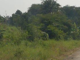Tanah Strategis di Rajeg Mauk Tangerang